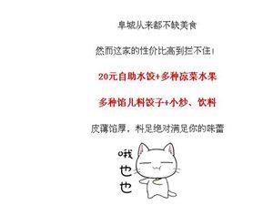 """【吃遍阜城】""""好婆婆自助水饺""""现包现煮,绝对让您吃好!"""
