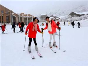 新年旅游:南川金佛山看雪景、泡温泉、观灯会、赏冰雕,畅享冰火两重天!