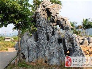 四大名石之一英石原产地英德盛产大型景观石和天然景观石,是最大的景观石供