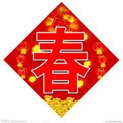 喜迎鸡年 欢度春节