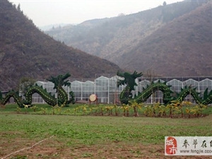 """奉节""""龙会花谷""""开园纳客 距县城20公里"""