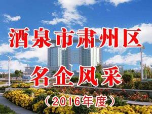 千赢国际|最新官网市肃州区名企风采(2016年度)
