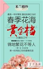富平米兰婚纱2.14情人节,稀缺花海黄金档耀世登场