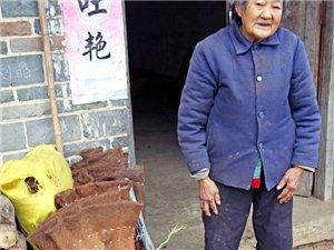 旬阳人物李花文 克难攻坚的平凡人生―记陕西省劳动模范李花文