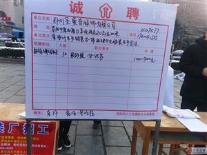 """2017荥阳市""""春风行动""""招聘会现场"""