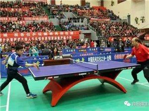 合阳乒乓球明星赛现场图(央视体育频道主持人、世界乒乓球冠军现场互动)