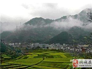 2017重磅消息:桐城这些村、镇又要火了!