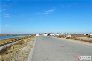 大港湿地冬季
