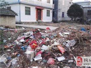 """看看吕亭平坦村叶庄的""""垃圾""""村"""