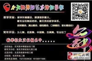 桐城小天鹅舞蹈学校春季招生开始了