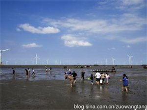 如东县重大项目规划及进展情况(随时更新)