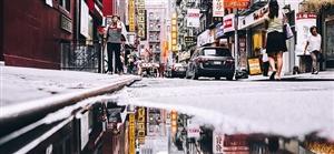 寒冷、萧瑟的气氛下,人们与建筑、建筑与城市、城市与天气构成的美景