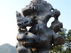 哪里的园林景观石供应商的石源好?需要天然园林石天然景观石的