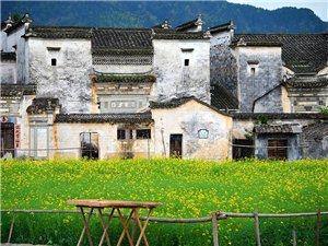 从未被列入旅行清单,这13个古镇却是江南