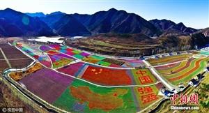 壮观!北京密云100万只风车拼出多彩画卷