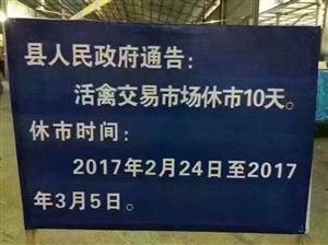 为预防H7N9,榕江活禽交易市场临时休市