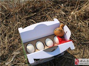 象耕树牌散养鹅蛋-天然清香-百分百无腥味