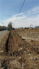 3月5日威尼斯人娱乐开户市最牛学习雷锋活动10余台挖掘机一起义务劳动