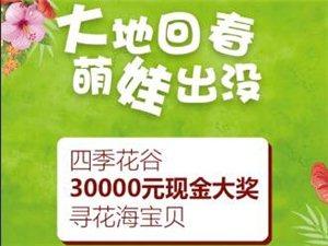 【�F定第十一�媒鸷Q┥铰糜挝幕��】四季花谷30000元�F金大���せê��