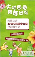 【贵定第十一届金海雪山旅游文化节】四季花谷30000元现金大奖寻花海宝