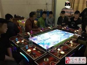 化州警方查处一藏匿私人住宅的涉赌游戏机室