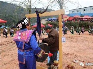 祭鼓节――卡乌鼓声阵阵传苗家风情美名扬