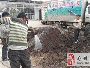 亳州:有家扶贫工厂,