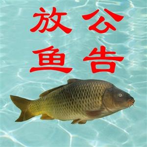 栗之缘放鱼公告