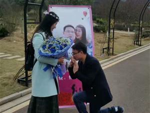 永州植物园上演浪漫求婚