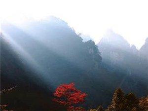 【俱程户外】大明山赏红叶活动