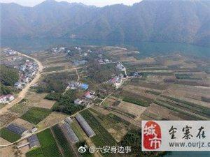【航拍六安茶谷小镇―麻埠镇响洪甸村的茶园美景】