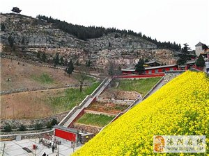 长春观的境界——参观长春观桃花节有感(转载)
