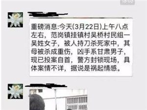 桐城范岗镇挂镇村发生一起杀人事件