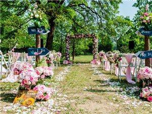 吉祥鸟庆典————草坪婚礼