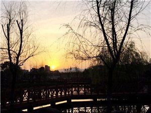 行走在春的早晨