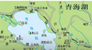 青海湖开湖水鸟增加1.3万余只黑颈鹤增加15只