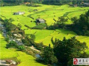 迷人的上敏风景,醉美的家乡山水――寻乌县丹溪乡上敏村