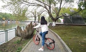 摩拜单车伴我逍遥游
