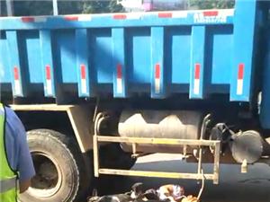 刚发生!网曝琼海爱华东路一电动车行驶员被货车碾压身亡,切记远离大货车!