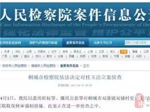 桐城双铺村党总支书记因滥用职权、挪用公款罪被立案侦查!