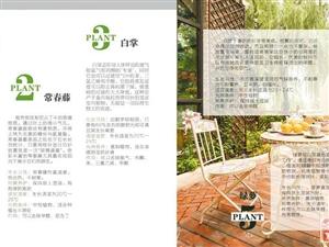 广千木门浅析家装健康的方法:最低化降低家装污染