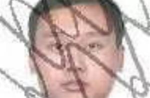 云南省禄丰县人民法院公布的岳池老赖:张川