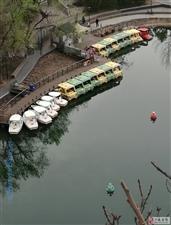 春水如蓝舟自横