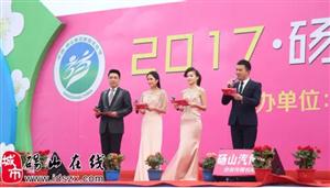 2017年梨花节活动