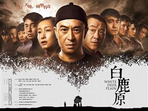 《白鹿原》上映陕西电视台躺枪