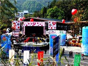 祥源・齐云小镇开街典礼隆重举行,国内首家旅游景区艺术馆在齐云山诞生