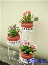 这样的花园您喜欢吗?这样的花架组合还适合您的环境吗?