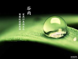 4.20二十四��庵�谷雨