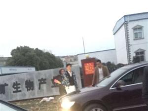桐城双新公安分局,案件怎么还压在派出所了