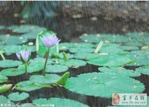 文学驿站|周小良:不是雨天的周末